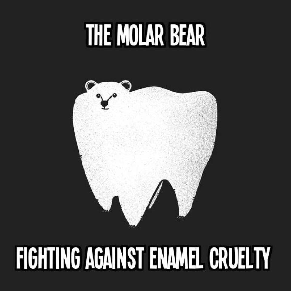 molar bear, enamel cruelty, polar bear pun