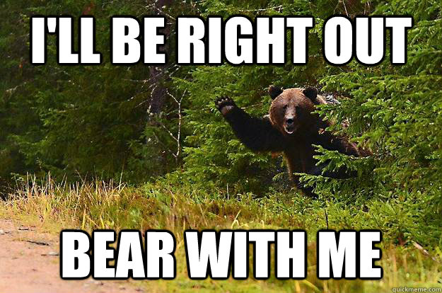 bear with me bear pun