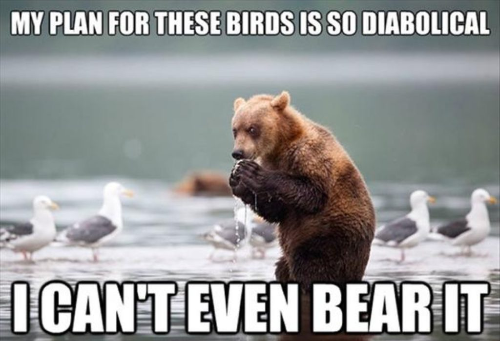 can't even bear it, bear pun meme