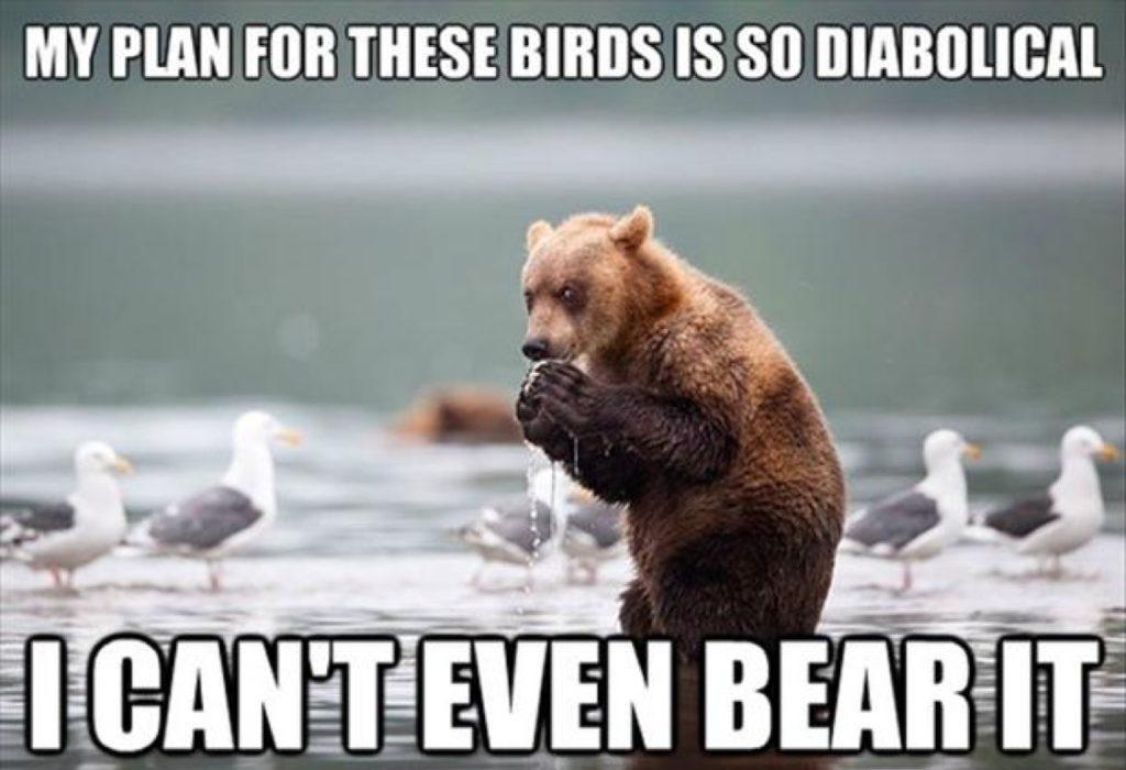 can't even bear it, bear pun meme