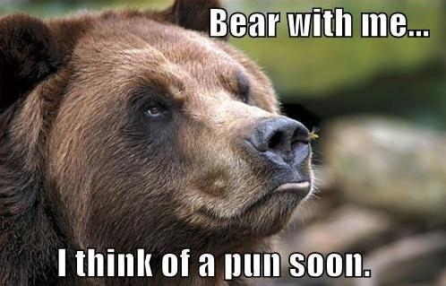 bear with me pun, bear