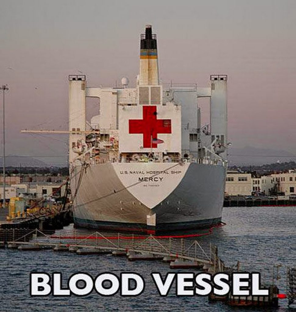 Blood vessel red cross boat pun, ship pun