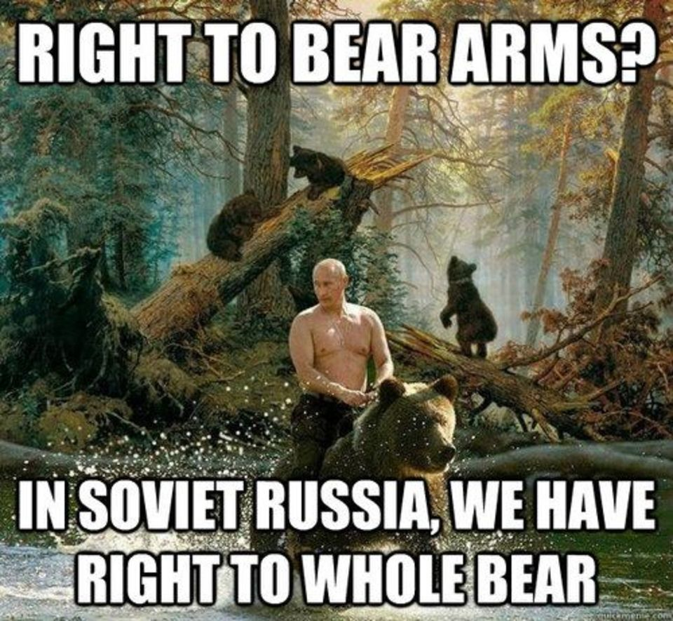 right to bear arms, whole bear pun