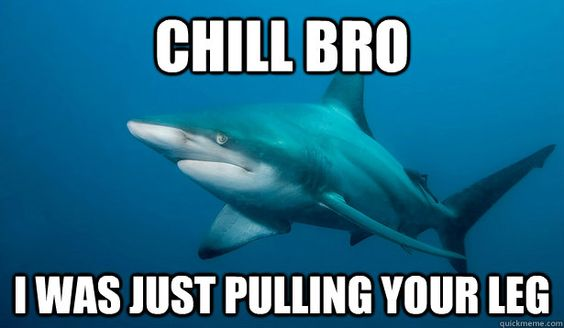 Just pulling your leg, shark pun