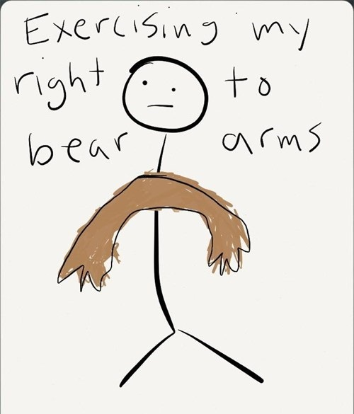 right to bear arms, bear pun