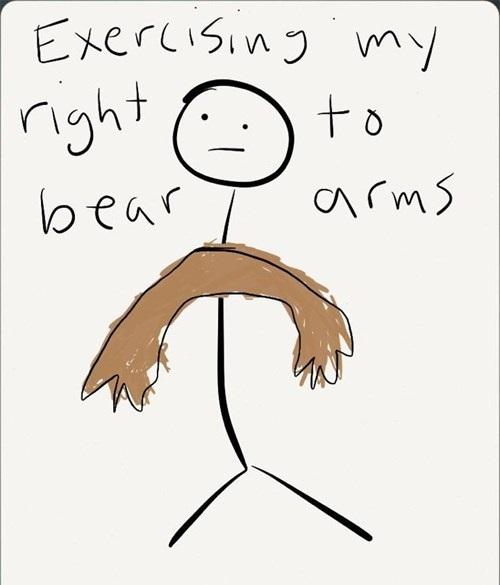 right to bear arms, bear pun