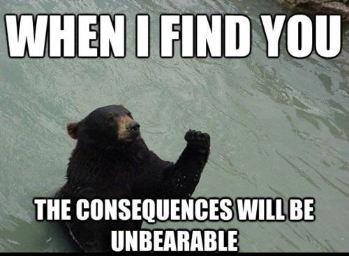 consequences unbearable, bear pun