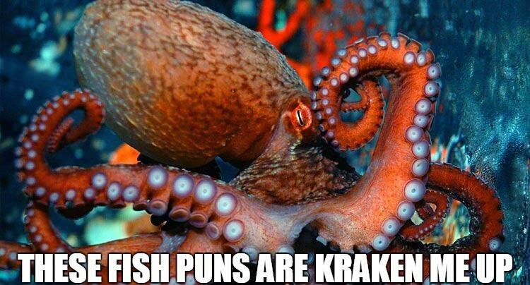 fish puns kraken me up