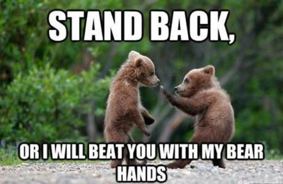 beat you with my bear hands, bare hand, bear puns