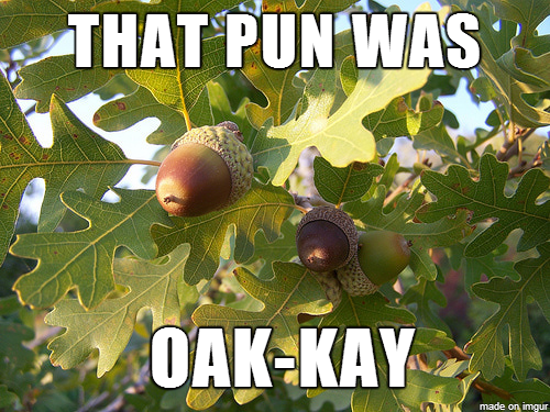 oak pun, tree pun