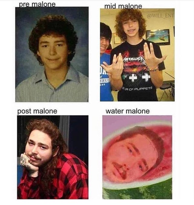 post malone pun