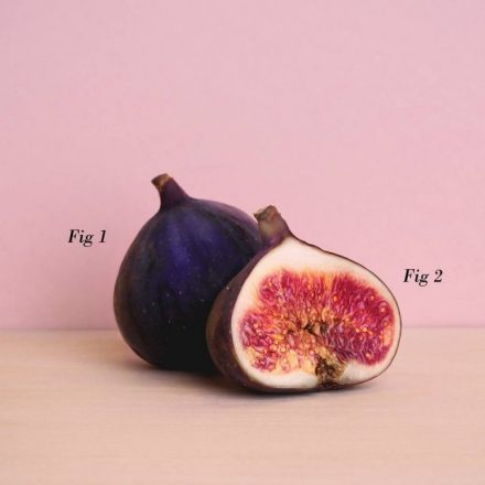 a pun on figs and figures